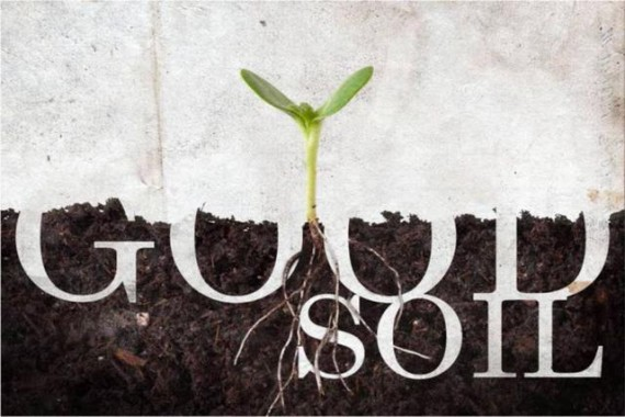 Soil, Sower, Seed